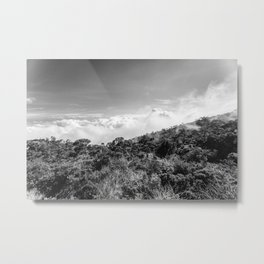Foggy days Metal Print