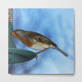 Robin on feeder Metal Print