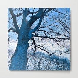 Majestic Tree (blue) Metal Print