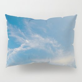 Hummingbird Cloud by Teresa Thompson Pillow Sham