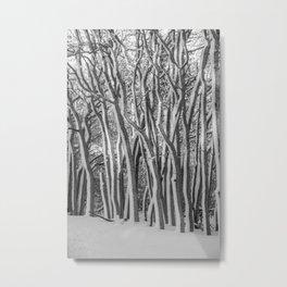 Tangled Trees Metal Print