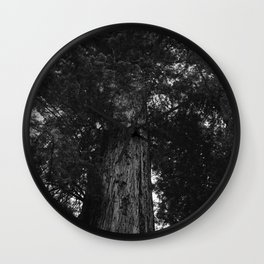 Sequoia National Park IV Wall Clock