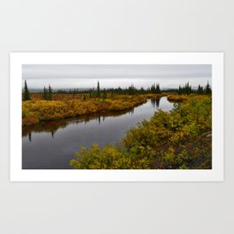 Autumn on the Kanuti River Art Print