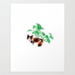 Golden Pothos cat Art Print