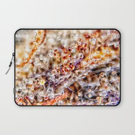Amber Trichomes Purple Diamond OG Indoor Hydro Dank Buds Close Up View Laptop Sleeve