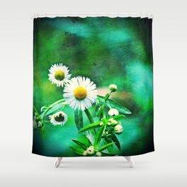 Asters on Green Velvet Shower Curtain