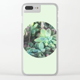 Green Roses in a box Clear iPhone Case