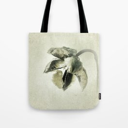 Coastal Cotton Tree - Hibiscus Tote Bag