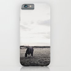 Horses in a Field in Black and White iPhone 6s Slim Case