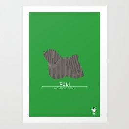 Puli Art Print