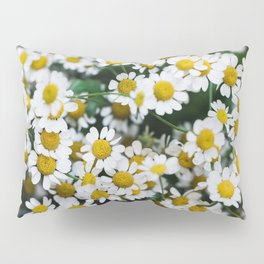 Camomile Wild Flowers Pillow Sham