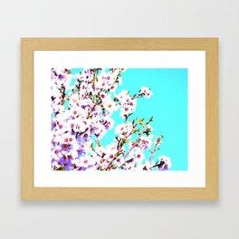 Sakura XIV Framed Art Print