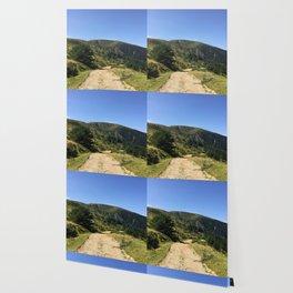 Mountain path Wallpaper