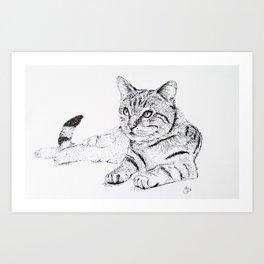 Cat Ink Drawing Art Print