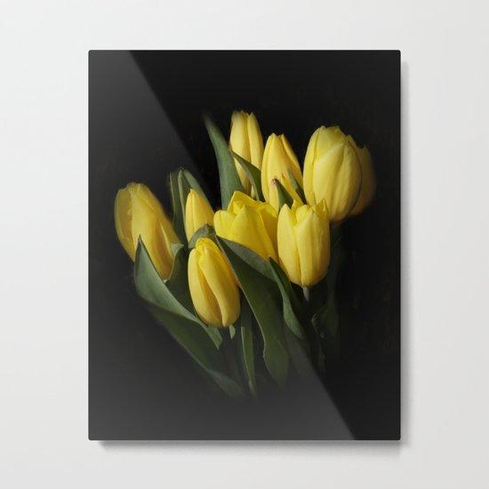 the elegance of spring -3- Metal Print