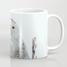 Snowy in the Wind (Snowy Owl 2) Coffee Mug
