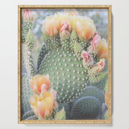 Cactus FlowerSeries: Yellow Pink Blooms Serving Tray