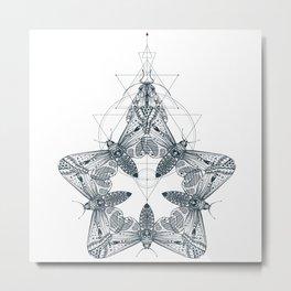 Moth around the garden Metal Print