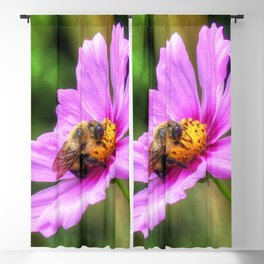 Bumble Bee on Pink Cosmos Blackout Curtain