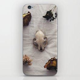 Praise iPhone Skin