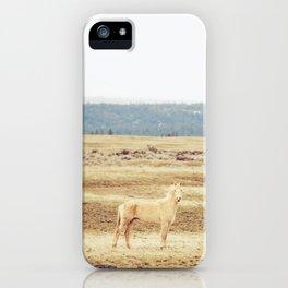 Two Oregon Horses iPhone Case