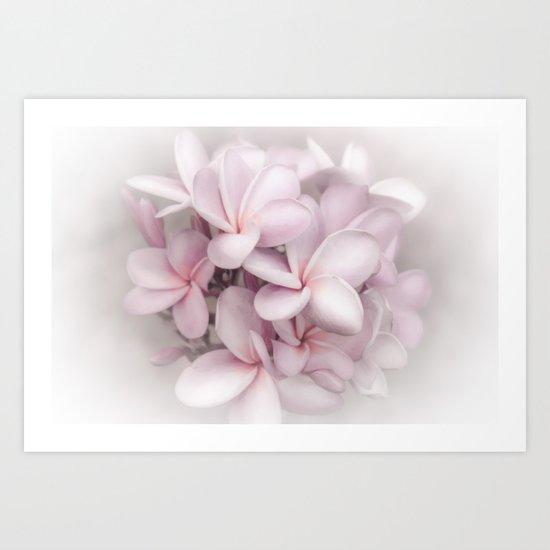 Plumeria love Art Print