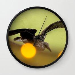 Fly around Wall Clock