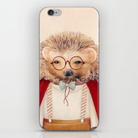 hedgehog iPhone & iPod Skins featuring Hedgehog by Animal Crew