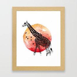 Giraffe´s Sunset Framed Art Print