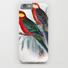 Vintage Print - The Birds of Australia (1910) - Red-Mantled Parrot / Yellow-Cheeked Parrot iPhone Case