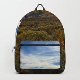 High Desert 2 Backpack
