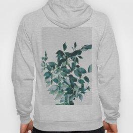 Botanic Hoody