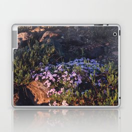 Wildflowers at Dawn - Nature Photography Laptop & iPad Skin