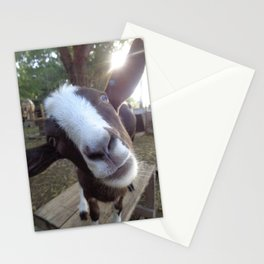 Goat Barnyard Farm Animal Stationery Cards