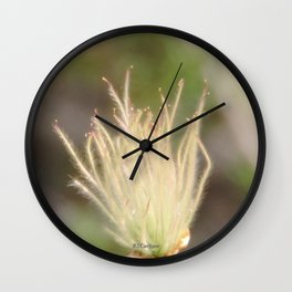 Apache Plume Wall Clock
