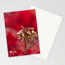 Seeds of Hope Stationery Cards