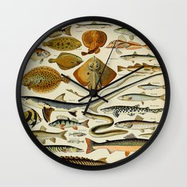 Fish Vintage Scientific Illustration French Language Encyclopedia Lithographs Educational Diagrams Wall Clock
