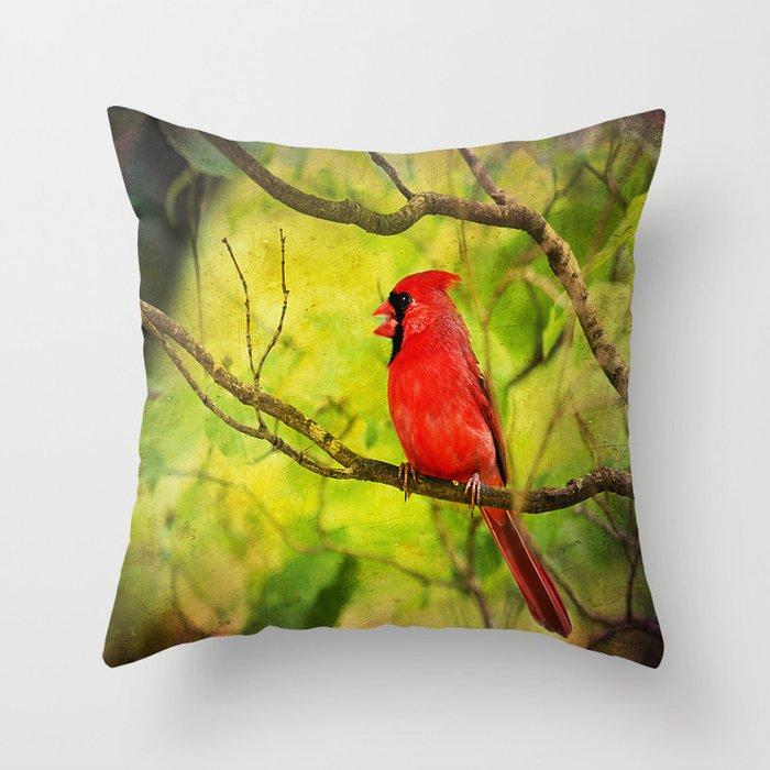 Spring Red Bird Throw Pillow by thephotoguydarren Society6