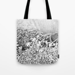 Transitions in nature part 1 Tote Bag