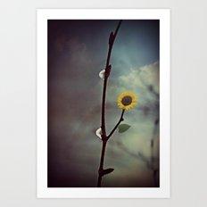 Raindrops & Sunflowers Art Print