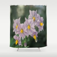 potato Shower Curtains featuring Potato Flowers by taiche