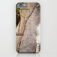 Dew drops on a fallen leaf iPhone 6s Slim Case