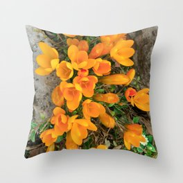 Golden Crocus In The Rockery Throw Pillow
