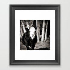Cowlick Framed Art Print