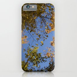 trees in the air iPhone Case