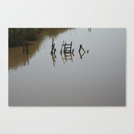 The river 's cryptic message Canvas Print