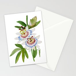 Passionflower Stationery Cards