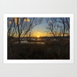 Sunset in the natural park of prat de cabanes, Spain Art Print