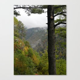 Pine Creek Gorge 2 Canvas Print