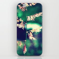Flowers in Germany iPhone & iPod Skin